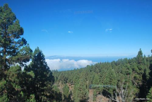 Понад хмарами, Тенеріфе, Канарські острови  InterNetri  015