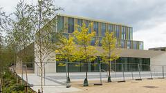 Confucius institute; still fenced off   ~HFF (Wendy:) Tags: ucd belfield campus confuciousinstitute hff