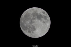 Luna Fragola (Francesca Murroni ┃Wildlife Photographer) Tags: cannigonis sardegna italia it strawberrymoon moon moonlight fullmoon sky nightsky night