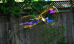 Soap Bubble Pop (Arvo Poolar) Tags: balloon outdoors ontario scarborough water inflight rainbowcolors natural naturallight soapbubble arvopoolar