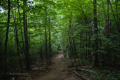 Rattlesnake Mountain trails (Boyd Shearer) Tags: holderness newhampshire unitedstates us
