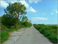 Long Lane .. (** Janets Photos **) Tags: uk hull naturereserves noddlehill lanes countryroads nature