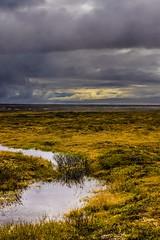 When the sun peaks out-1240155red2 (Mathieu Dumond) Tags: canada arctic nunavut tundra june summer rain sky clouds drama nature mathieudumond umingmakproductions inexplore