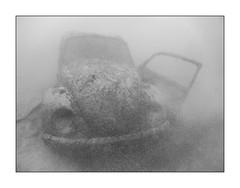 Volkswagen (Knipsbildchenknipser) Tags: vw volkswagen typ1 käfer bug beatle wrack diez baggerseediez tauchen diving scuba scubadiving see uw underwater unterwasser sw schwarzweiss monochrome bw blackandwhite blackwhite