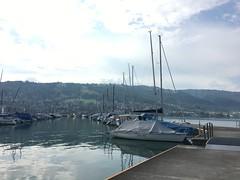 Bootshafen, Zug
