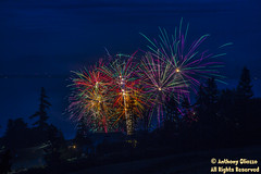 "Overlooking Skagit Bay Fourth of July- Camano Island 2018 (Anthony ""Tony G"" Gliozzo (Web Site is ocbirds.com)) Tags: anthonygliozzo camanoislandwashington canon5dmarkiiiandcanon24105mm fireworks bay colors nighttime northwest water burst jubilant celebration explosion blue purple stream"