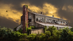 Visiting Fort Tilden. Rockaway, New York City. (Gimo Nasiff) Tags: gimo guillermo nasiff photography architecture arquitectura architectural architettura arquitetura architektur art arkitektur artchitecture building abandoned rockaway far beach queens nyc new york city dramatic sony a7ii ilce7m2 ilce7mii nikkor50mmf14 nikkor manual lens 50mm f14 riis park ayyoi kusama installation alpha breezy point outdoor outdated broken glasses windows metal structure factory industrial