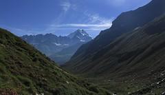 vue arrière sur la Combe des Planards (bulbocode909) Tags: valais suisse bourgstpierre valdentremont combedesplanards montagnes nature combin nuages paysages vert bleu rhododendrons groupenuagesetciel