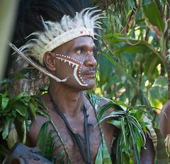 DSC_0237 (yakovina) Tags: papuanewguinea alotau silversiaexpeditions