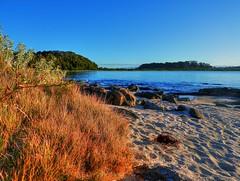 On the island XI (elphweb) Tags: hdr highdynamicrange nsw australia seaside sea ocean water beach sand sandy brouleeisland island rock rocks rockformation