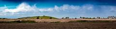 Coyote Hills Horizon (CDay DaytimeStudios w/1,000,000 views) Tags: ca california clouds coyotehills eastbay eastbayregionalparks fremont fremontca grassland marsh marshland sanfranciscobayarea winter