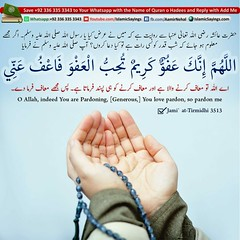 Dua for Lailatul Qadr - Supplications for the Night of Decree (aamirnehal) Tags: quran hadees hadith seerat prophet jesus moses book aamir nehal love peace quotes allah muhammad islam zakat hajj flower gift sin virtue punish punishment teaching brotherhood parents respect equality knowledge verse day judgement muslim majah dawud iman deen about son daughter brother sister hadithabout quranabout islamabout riba toheed namaz roza islamic sayings dua supplications invoke tooba forgive forgiveness mother father pray prayer tableegh jihad recite scholar bukhari tirmadhi