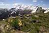 Spring is here (JR-pharma) Tags: hiking hike pyrénées ariège ariege moulzoune jasse de la taula roc gourgue carrière porteille pic saint barthelemy