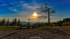 Rastplätze (Emanuel D. Photography) Tags: nature tree forest sunset landscape sky outdoors scenics sun sunlight morning blue dusk summer dawn season