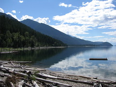 Johnson's Landing Beach, Looking South (Danny Lane Anderson) Tags: british columbia canada kootenay lake forest purcell mountains driftwood summer sunny