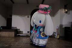 53AL5813 (OHTAKE Tomohiro) Tags: sanriopuroland tama tokyo japan jpn