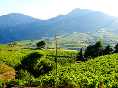 DSC00571 (omirou56) Tags: 43ratio sonydschx60v nature natur natura peloponnisos peloponisos peloponnese greece hellas landscape mountains green 7dwf