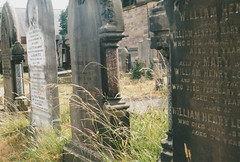 Wild Grass (missemorris) Tags: film filmcamera petri petri7s 35mm graveyard deadgrass death cemetery headstones
