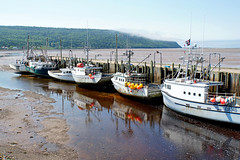DSC00734 - Advocate Harbour Wharf (archer10 (Dennis) 142M Views) Tags: sony a6300 ilce6300 18200mm 1650mm mirrorless free freepicture archer10 dennis jarvis dennisgjarvis dennisjarvis iamcanadian novascotia canada glooscaptrail fundy advocate harbour wharf boats low tide fishing appleriver buoys