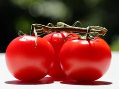 SUMMER TRIO! (Ageeth van Geest) Tags: 7dwf redroundtrio smileonsaturday tomatoos tomato red macro