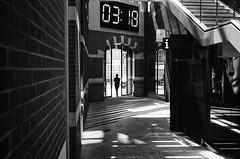03:18 (gato-gato-gato) Tags: 35mm asph amsterdam europa europe ferien holland iso400 ilford ls600 leica leicamp leicasummiluxm35mmf14 leicasummiluxm50mmf14asph mp messsucher nl netherlands noritsu noritsuls600 strasse street streetphotographer streetphotography streettogs summilux wetzlar adventure analog analogphotography aspherical believeinfilm black classic film filmisnotdead filmphotography flickr gatogatogato gatogatogatoch holidays homedeveloped manual mechanicalperfection rangefinder streetphoto streetpic tobiasgaulkech travel trip white wwwgatogatogatoch noordholland niederlande manualfocus manuellerfokus manualmode schwarz weiss bw blanco negro monochrom monochrome blanc noir strase onthestreets