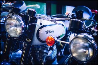 Norton P800