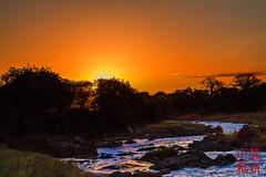 Sunset on the Tarangire River (DragonSpeed) Tags: africa africanwildcatsexpeditions banana landscape plant safari sunset tzday01 tanzania tarangirenationalpark river manyara