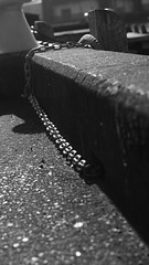 DSC06953 (A Common Courtesy) Tags: a common courtesy wellington auckland new zealand camera photo bw color black white day night monochrome bokeh sony nex 5a nex5a focuspeaking minolta mc pg 50mm 14rokkor fotodiox adapter