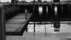 DSC06945 (A Common Courtesy) Tags: a common courtesy wellington auckland new zealand camera photo bw color black white day night monochrome bokeh sony nex 5a nex5a focuspeaking minolta mc pg 50mm 14rokkor fotodiox adapter