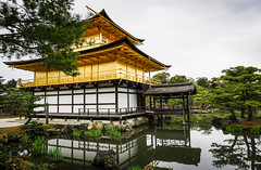 Golden (kimbar/Thanks for 4 million views!) Tags: japan kinkakuji kyoto lake reflection temple templeofthegoldenpavilion trees