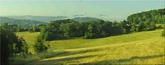 morning light (friedrichfrank1966) Tags: morning light nature nrw siegen meadows green sunshine trees pano panoramica panorama shadows mountains sky bluesky silhouettes nikon d90 misty nebel scenery art rahmen view