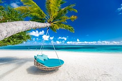 Perfect weather (icemanphotos) Tags: beach seascape loungers solitude palm sea tropical canon