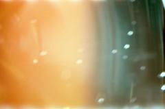 hexagon. (theblackcap) Tags: analogphotography filmphotography istillshootfilm 35mm 35fuckingmm analoguephotography shootingfilm analogvibes analogcamera analogfeatures filmisnotdead filmisalive analogshooters analogueshooters believeinfilm thefilmcommunity 35analog canon filmisgod shotonfilm buyfilmnotmegapixels grainisgood theanalogueproject canona1 canona1program staybrokeshootfilm kodak kodakcolor kodakcolorplus kodakcolorplus200