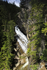 5IMG3039 Granite Falls (Glenn Gilbert) Tags: idaho panhandle priest lake river stream creed waterfall forest sky rock rocks rocky landscape woody color image vertical canon clouds cloudy sunshine morning cedars evergreens falls ngc