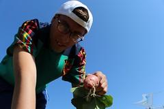 Recogida-albaricoques-huerteando-180627-Asociacion-San-Jose-Guadix-2018-0012 (Asociación San José - Guadix) Tags: huerteando asociación san josé albaricoques agricultura ecológica sostenible