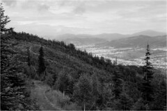 About path / O ścieżce (Piotr Skiba) Tags: beskidy węgierskagórka forest mountains clouds landscape monochrome bw ilfordfp4 poland pl piotrskiba
