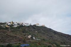 Ікод-де-лос-Вінос, Тенеріфе, Канарські острови  InterNetri  149