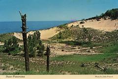 Dune Panorama, 1985 - Chesterton, Indiana (Shook Photos) Tags: postcard postcards chromepostcard chromepostcards chrome dune dunes indianadunesstatepark dunesstatepark indianadunes beach shore shoreline lakemichigan chestertonindiana chesterton indiana portercounty