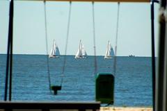 Sailboats on the Bay (evaamichie) Tags: sailing sails blue boats