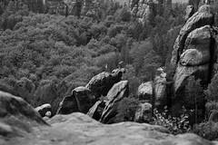 (heinrichj) Tags: monochrome bw fuji fujix fujifilm fujinon hiking nature saxon switzerland erzgebirge sachsen germany europe mountain mountains climbing landscape