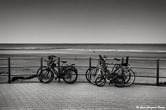3073 - Westende, 2018 (ikaune) Tags: nb bw noiretblanc blackandwhite ikaune argentic argentique monochrome belgique westende vélos bicyclettes mer seaside