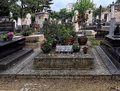 Le Poinçonneur des Lilas (Jean S..) Tags: montparnasse gainbourg subway cemetery graves singer trees stone flowers