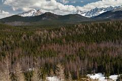 Tatra Mountains (Kajfash) Tags: canoneos5dmarkii canonef24105mmf4lisusm tatry tatramountains landscape krajobraz nature natura wielkikopieniec poland polska