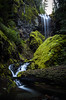 Waterfall (Eric DeBord) Tags: temperaterainforest 6d moss naturallight oregon waterfall nw forest water creek northwest willamettenationalforest cascademountains nature canontse24mmf35lii canon