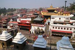 2018-03-24 (Giåm) Tags: kathmandu kathmandou katmandou katmandu काठमाडौं pashupatinath pashupatinathtemple पशुपतिनाथमन्दिर kathmanduvalley nepal नेपाल giåm guillaumebavière