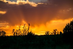 Evening Orange Sky (Anna Gurule) Tags: orangeevening stormyskies clouds cloudyskies rainy eldoradoatsantafenm beautiful artedgy annagurule annaortizgurule