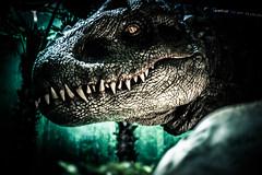 Dinosaures-5.jpg (winnono) Tags: dinosaure