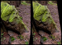 The banned troll 3-D / CrossEye / Stereoscopy / HDRaw (Stereotron) Tags: sachsenanhalt saxonyanhalt ostfalen harz mountains gebirge ostfalia hardt hart hercynia harzgau schierke stone rock face lithified crosseye crossview xview pair freeview sidebyside sbs kreuzblick 3d 3dphoto 3dstereo 3rddimension spatial stereo stereo3d stereophoto stereophotography stereoscopic stereoscopy stereotron threedimensional stereoview stereophotomaker stereophotograph 3dpicture 3dimage canon eos 550d chacha singlelens kitlens 1855mm tonemapping hdr hdri raw 3dframe fancyframe floatingwindow spatialframe stereowindow window