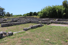 IMG_4929 Paestum (drayy) Tags: paestum rome roman ancient magnagraecia temple town italy europe campania greek