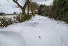 Snow In Morley, Derbyshire (Geraldine Curtis) Tags: snow morley derbyshire field beastfromtheeast